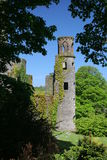 Blarney Castle. Ireland Royalty Free Stock Image