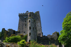 Blarney Castle royalty free stock photo