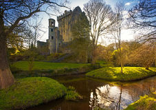 Free Blarney Castle Royalty Free Stock Photo - 8467665