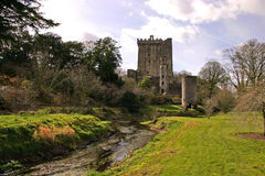Blarney Castle Cork Royalty Free Stock Photo