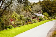 Blarney Castle Gardens stock image