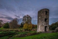 Blarney Castle Stock Images