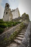 The blarney castle 2 Royalty Free Stock Photography