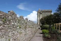 Blarney Castle Stock Photo