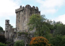 Blarney Castle Ireland. Blarney Castle County Cork Ireland with tower and grounds Royalty Free Stock Photography
