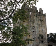 Blarney Castle Ireland. Blarney Castle County Cork Ireland with trees Royalty Free Stock Photography