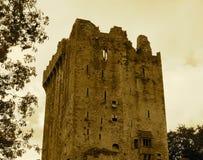 Blarney Castle Ireland. Blarney Castle County Cork Ireland with trees Royalty Free Stock Photos