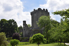 Blarney Castle. The Blarney Castle in Ireland, home of the Blarney Stone Stock Images
