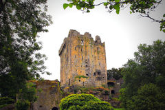 Blarney Castle, Ireland. Ireland, Blarney Castle, Irish: Caisleán na Blarnan, is a medieval stronghold in Blarney, near Cork, Ireland, and the River Martin Royalty Free Stock Image