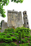 Blarney Castle, Ireland. Ireland, Blarney Castle, Irish: Caisleán na Blarnan, is a medieval stronghold in Blarney, near Cork, Ireland, and the River Martin Royalty Free Stock Photos
