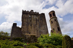 Blarney Castle in Ireland in summer Royalty Free Stock Photo