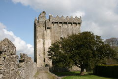Blarney castle power, cork county, ireland. Popular in usa castle to visit in europe, to kiss blarney stone, placed in the tower Royalty Free Stock Images