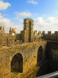 Blarney castle. From the top Royalty Free Stock Photography