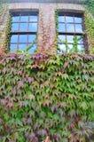 Blarney Cottage Royalty Free Stock Photo