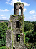 Blarney Tower, Ireland. Tower covered in ivy at Blarney Castle in Ireland Royalty Free Stock Photos