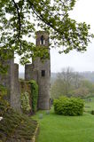 blarneyslott ireland Royaltyfri Fotografi