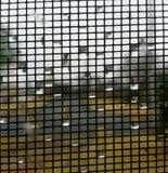 Blasen auf dem Fenster Stockfotos