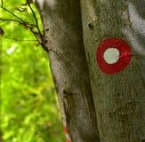 Blask, czerwień i biel, podpisujemy na bukowym drzewie fotografia stock