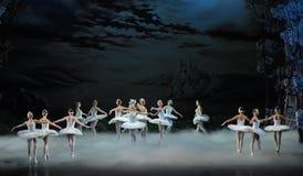 Blask księżyca nocy kopyto_szewski scena Łabędzi baleta Łabędź jezioro Obrazy Stock