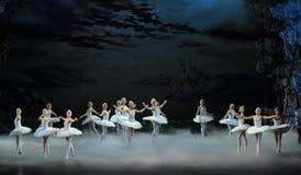 Blask księżyca nocy kopyto_szewski scena Łabędzi baleta Łabędź jezioro Obraz Stock