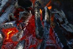 Blask ognisko drewnianego ogienia płomienia iglicy w grabie Obraz Royalty Free