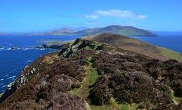 Blasket wyspa Fotografia Stock