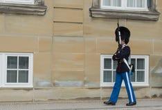 Blaszany żołnierz Amalienborg szczelina, Kopenhaga - Królewski życie strażnik - Obraz Royalty Free