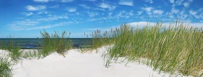 Baltic Sea Beach - Panorama. In Summertime royalty free stock photo