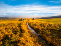 Blatna irrigation canal in the middle of autumn landscape near Ryzovna, Ore Mountains, Czech Republic Royalty Free Stock Photography