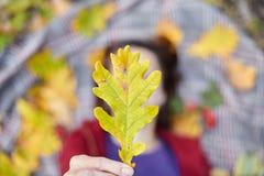 Blatt der gelben Eiche in Mädchen ` s Hand lizenzfreie stockfotografie