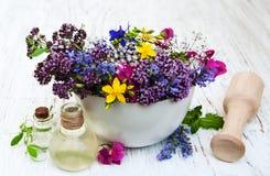 Blatt der wilden Blume und des Krauts im Mörser Lizenzfreie Stockbilder