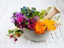 Blatt der wilden Blume und des Krauts im Mörser Stockfotografie