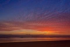 Blatt des Sonnenuntergangs Stockbild