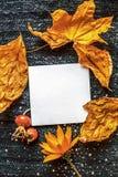 Blatt des weißen Quadrats auf dem Hintergrund eines gestrickten braunen Textilhintergrundes, trockenes Gelb verlässt, rote wilde  Lizenzfreies Stockfoto