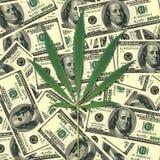 Blatt eines Hanfs Hintergrund des Geldes Lizenzfreies Stockfoto