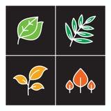 Blatt, Ikone, Linie, Anlage, Entwurf, Satz, Natur, Baum, Ikonen, Design, Symbol, Zeichen, Logo, Wachstum, Illustration, Blume, or Lizenzfreies Stockfoto