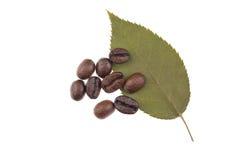 Blatt mit Kaffeebohnen lizenzfreie stockbilder