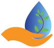 Blatt mit Wasser-Tropfen Lizenzfreies Stockfoto