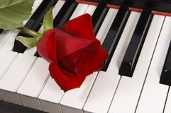 Blatt-Musik mit Rose auf Klavier Stockbilder