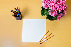 Blatt Papier leeres Papier, bunte Bleistifte und pelargonia blühen Lizenzfreie Stockfotografie