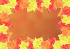 Blatt-Rahmen mit orange Hintergrund Stockfoto