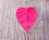 Blatt, rotes Herz wird auf einen Bretterboden gesetzt Topview Stockfotografie