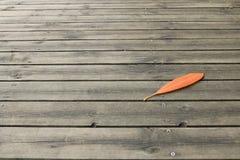 Blatt trocken auf dem Bodenholz Lizenzfreies Stockfoto