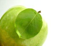 Blatt u. Apfel Lizenzfreies Stockbild