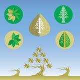 Blatt-und Baum-Design-Vektor Lizenzfreies Stockfoto