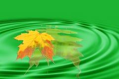 Blatt und grüne Wellen Stockbild