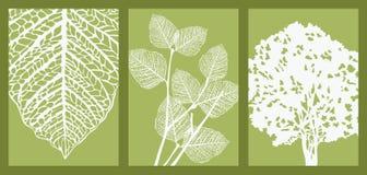 Blatt, Zweig und Baum lizenzfreie abbildung