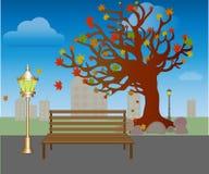 Blattfall in Herbstpark Bank unter Bäumen mit gelbem Blätter Vektor lizenzfreie abbildung
