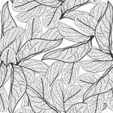 Blattkonturen auf weißem Hintergrund mit Blumen nahtloses Muster für Gewebe, Tapete, Musterfüllen, Webseitenhintergrund, Oberfläc Stockbild