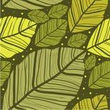 Blattlügen vektor abbildung